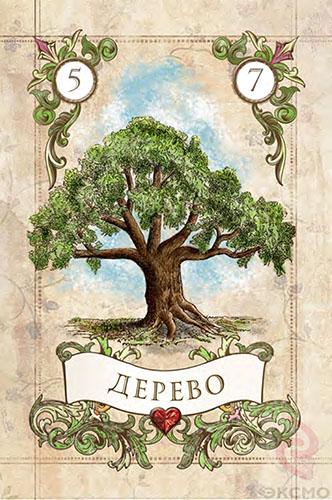 Значение карт ленорман Дерево, карты ленорман, карта Дерево, гадание на ленорман