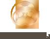 norny-logo-5