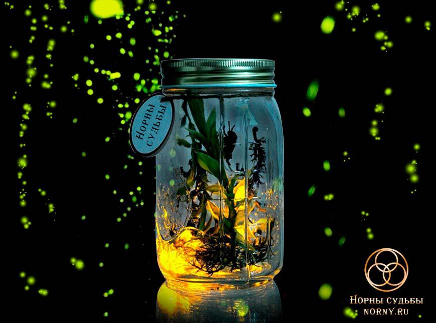 ведьмина бутылка, оберег, защита, магия,, защита для дома и семьи