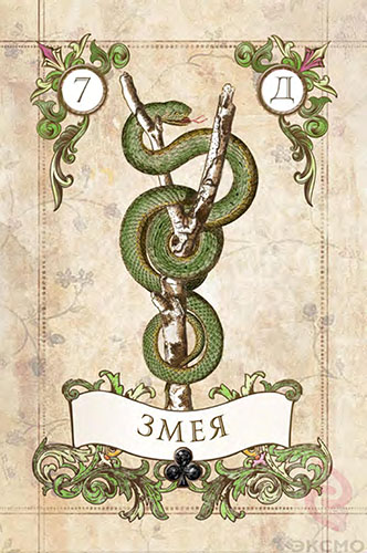 Значение карт ленорман Змея, карты ленорман, карта Змея, гадание на ленорман