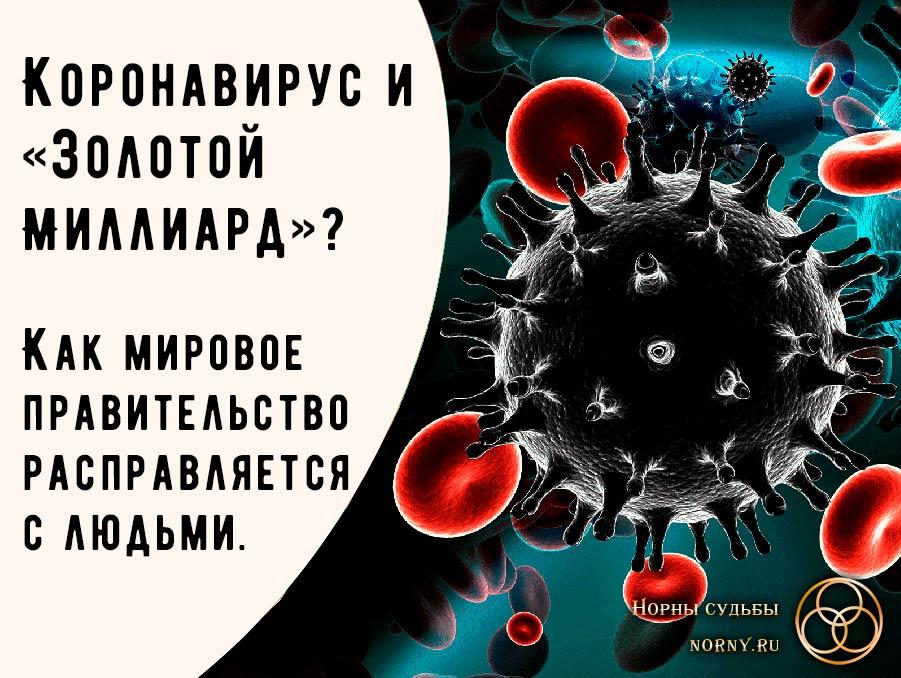 коронавирус, коронавирус в россии, коронавирус в европе, коронавирус в Китае, коронавирус в сша