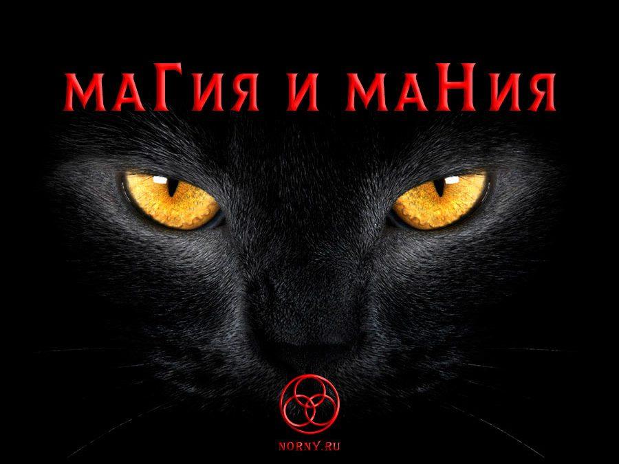 эхотерика, маги, колдуны, магия, страх, маг,ведьма, экстрасенсы