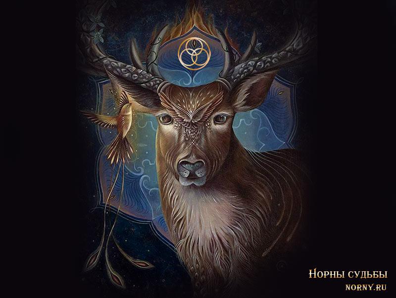 тотемы животных, тотем по рождению, тотем по дате, тотем славяне, тотем волка, тотем медведя, медитации на тотем