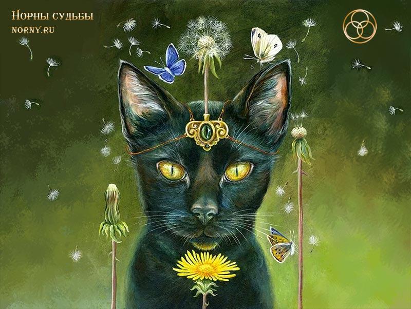 тотемы, тотемы животных, тотем кошка, кошка, животные, узнать тотемное животное